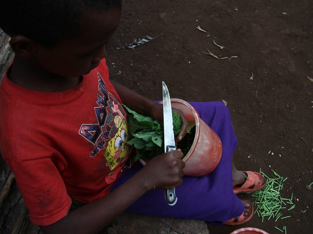 det_goer_vi_arbejdet_ude_i_verden_barn_fra_afrika_snitter_groentsager